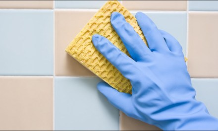 Cleaner banned and fined £25 for being ill