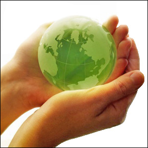 Employees lack of environmental guidance at work