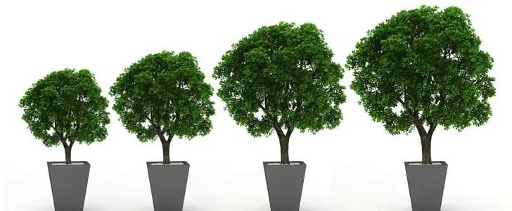 Paul Avis: Growing the group risk market