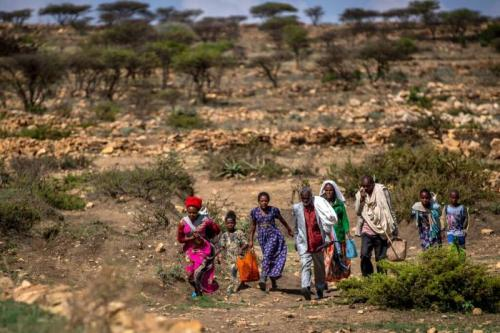 People walk from a rural area towards a food distribution site near the town of Agula, in Tigray, Ethiopia