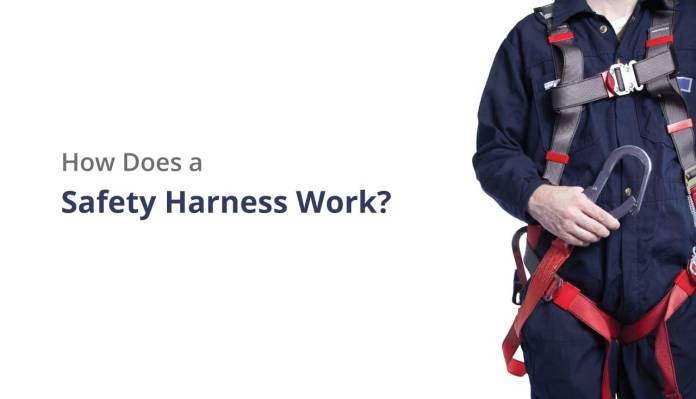 How Does a Safety Harness Work