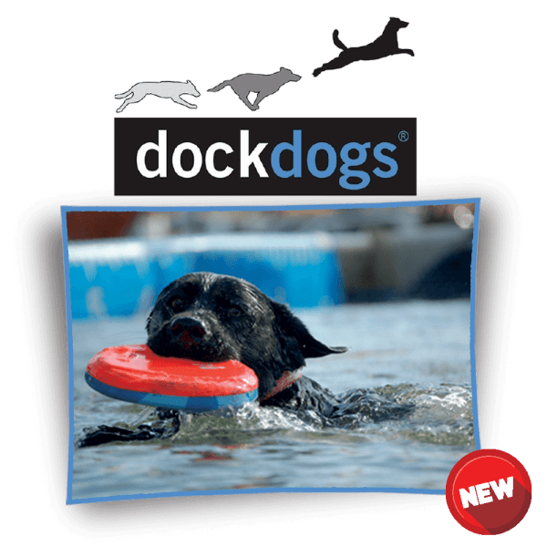 dock dogs