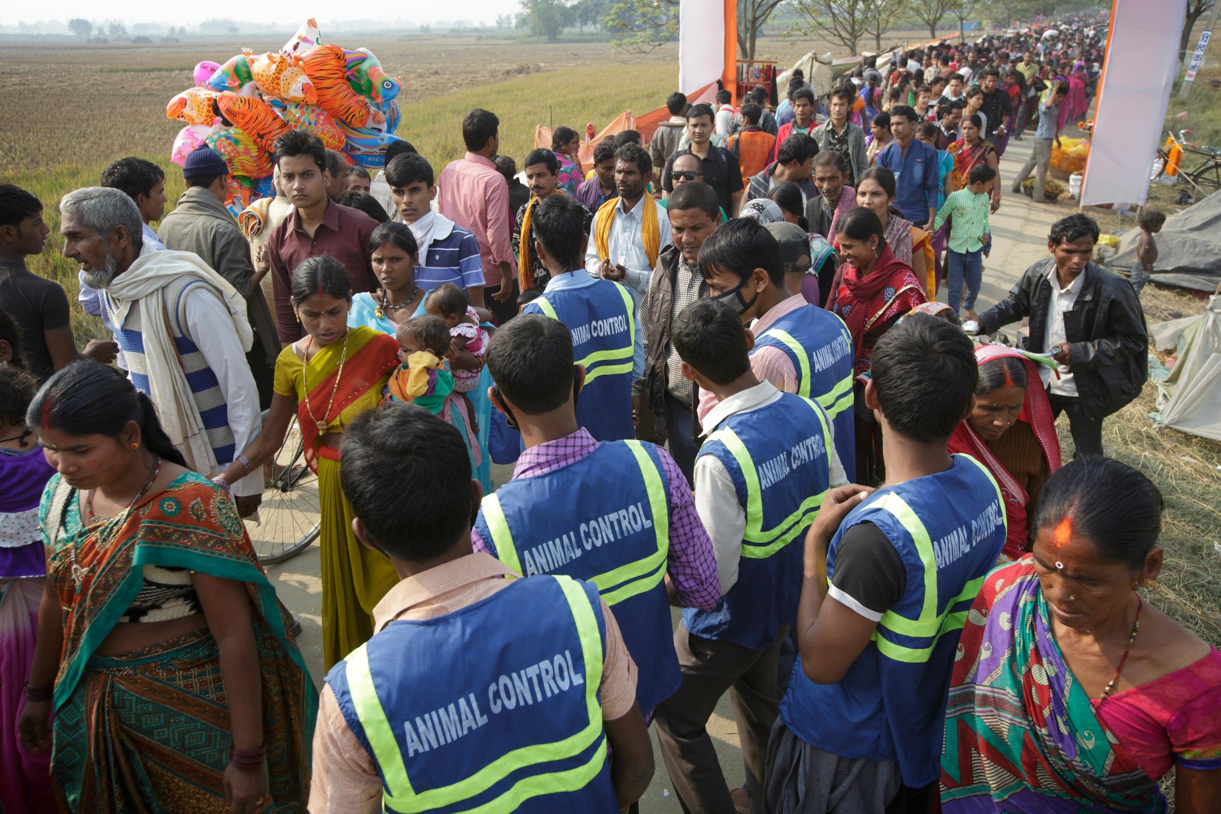 Animal control at Gadhimai