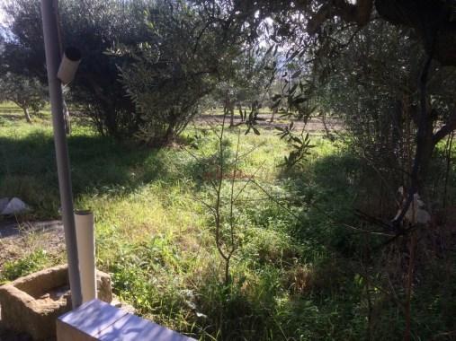 Baglio Furetti_Casalebianco (13)