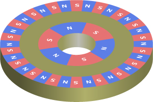 Figure 2. Dual Resolution Ring Magnet