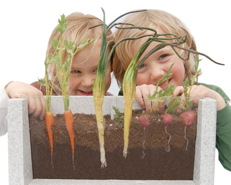 HSP Nature Toys Root-Vue Farm 1