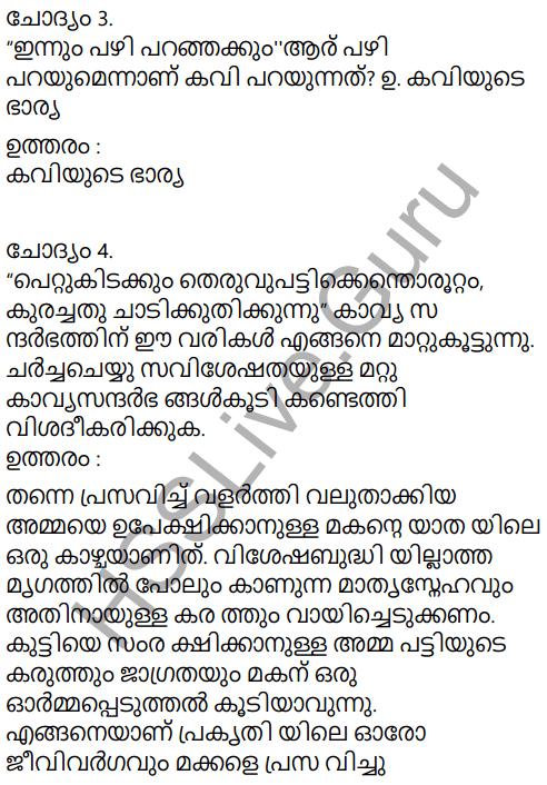 Adisthana Padavali Malayalam Standard 10 Solutions Unit 1 Chapter 3 Ammathottil 33