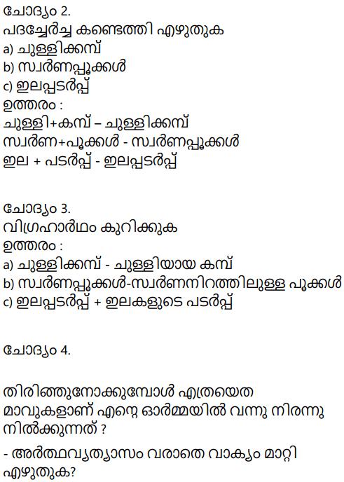 Adisthana Padavali Malayalam Standard 10 Solutions Unit 2 Chapter 1 Kochu Chakkarachi 24