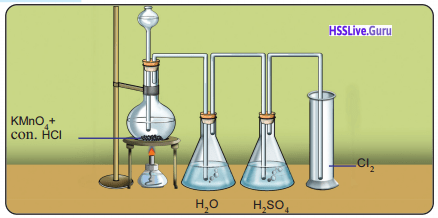 Kerala Syllabus 9th Standard Chemistry Solutions Chapter 6 Non-Metals 12
