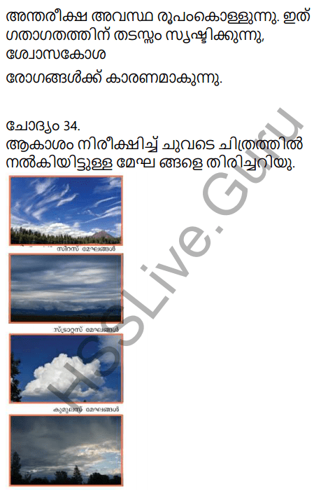 Kerala Syllabus 9th Standard Social Science Solutions Chapter 1 Sun The Ultimate Source in Malayalam 32
