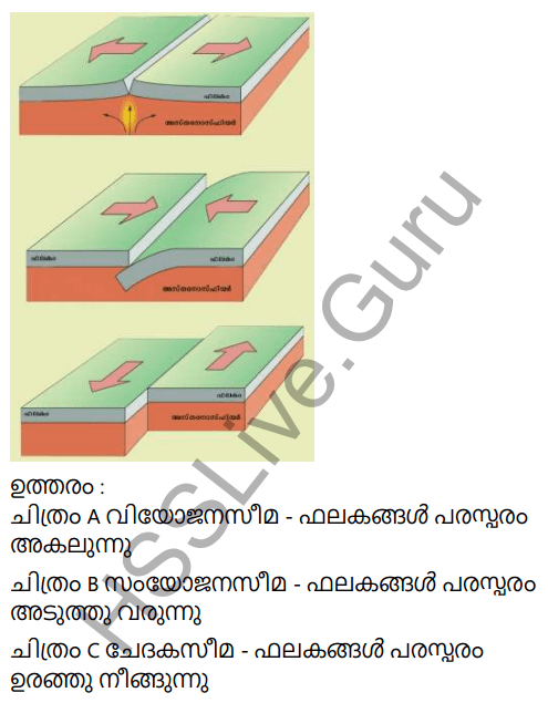 Kerala Syllabus 9th Standard Social Science Solutions Chapter 2 The Signature of Time in Malayalam 9