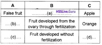 Plus Two Botany Sexual Reproduction in Flowering Plants Two Mark Questions and Answers 4