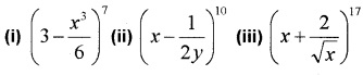 Plus One Maths Binomial Theorem Three Mark Questions and Answers 1