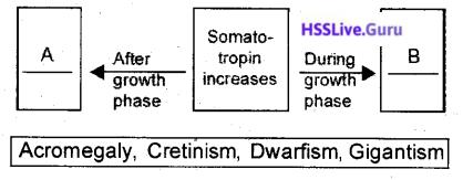 Kerala SSLC Biology Model Question Paper 3 English Medium - 2