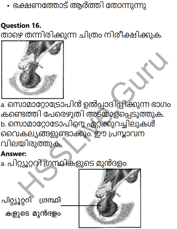 Kerala Syllabus 10th Standard Biology Solutions Chapter 3 Chemical Messages for Homeostasis in Malayalam 30