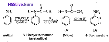 Plus Two Chemistry Notes Chapter 13 Amines 19