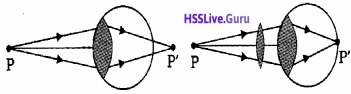 Plus Two Physics Notes Chapter 9 Ray Optics and Optical Instruments - 69
