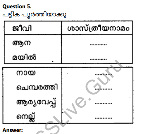 Kerala Syllabus 8th Standard Basic Science Solutions Chapter 12 Why Classification in Malayalam 11