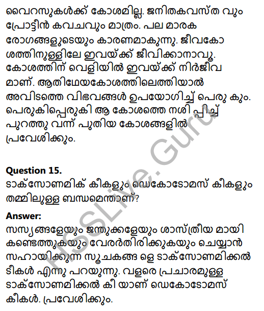 Kerala Syllabus 8th Standard Basic Science Solutions Chapter 12 Why Classification in Malayalam 18