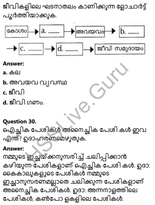 Kerala Syllabus 8th Standard Basic Science Solutions Chapter 2 Cell Clusters in Malayalam 34
