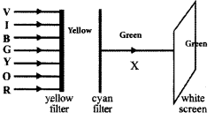 Kerala Syllabus 10th Standard Physics Solutions Chapter 6 Vision and the World of Colours image 20