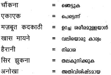 Plus One Hindi Textbook Answers Unit 1 Chapter 1 अनुताप 17