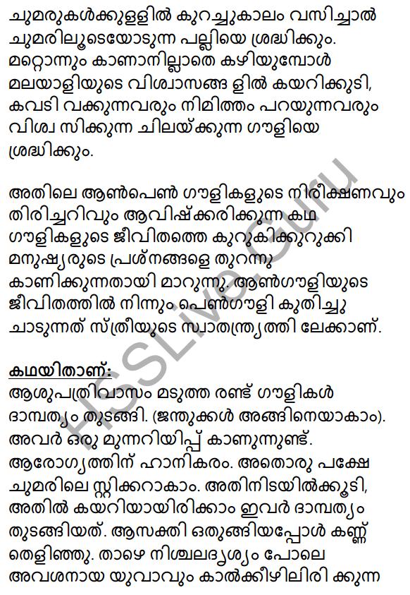 Gauli Janmam Summary 3