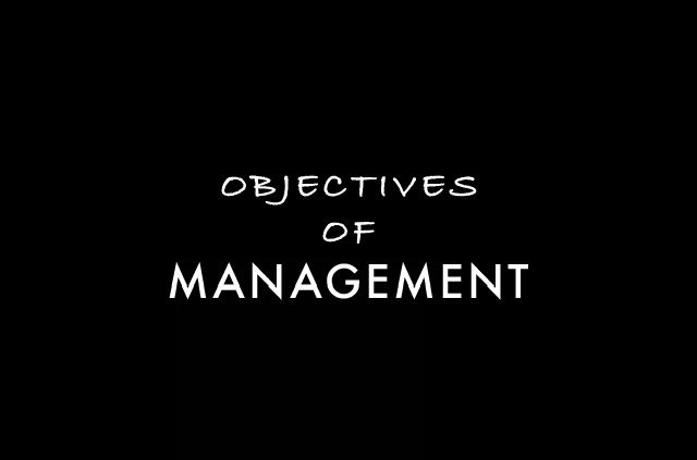 Objectives of management
