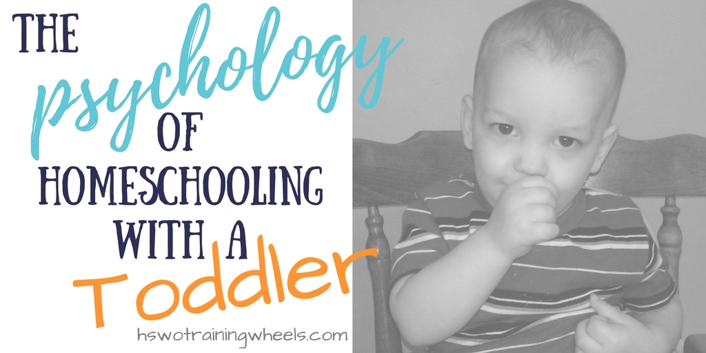 The Psychology of Homeschooling with a Toddler
