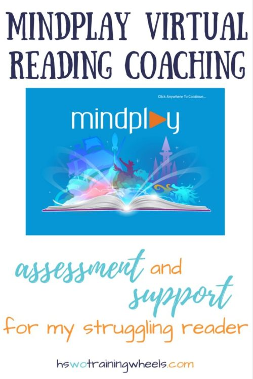 We knew my son was struggling with reading. We needed some way to assess where the problems were and to support his learning. MindPlay did both!
