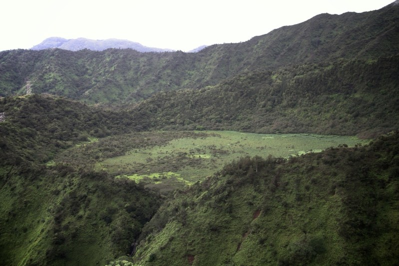 A view of Ka'au Crater from Lanipo Trail
