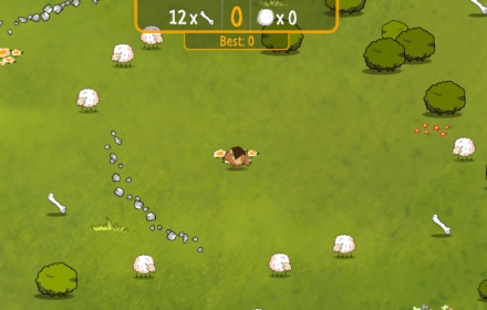 Assassin;s Sheep