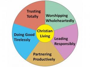 Vicar's Vision 2014