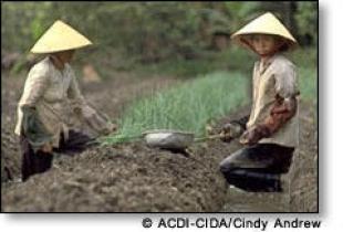 story-vietnam-1.jpg