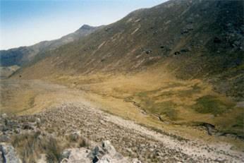 quipacaca