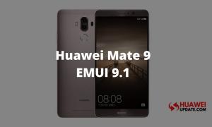 Mate 9 EMUI 9.1.0.270