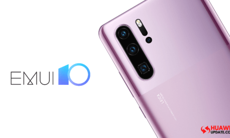 Huawei P30 Pro EMUI 10.0.0.210
