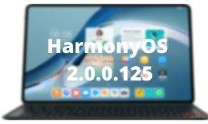 HarmonyOS 2.0.0.125