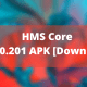 Download HMS Core 6.1.0.201 APK (1)