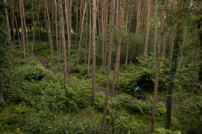 Mountain bikers riding in a forest