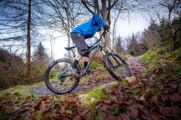 A mountain biker climbing a trail