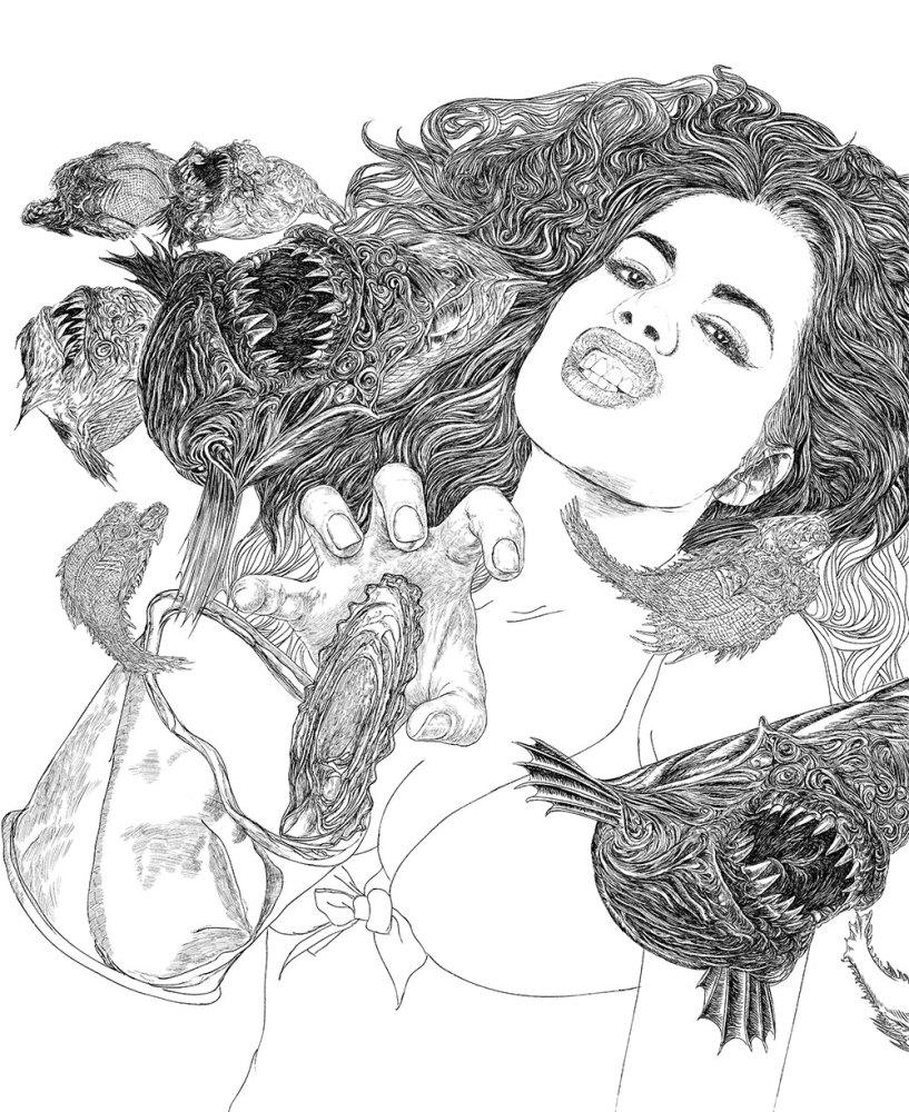 cd cover illustration fish art drawing