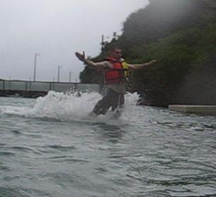 cruise tom dolphin