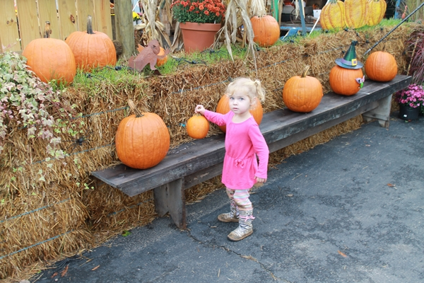 2014-10-16pumpkinpatch51