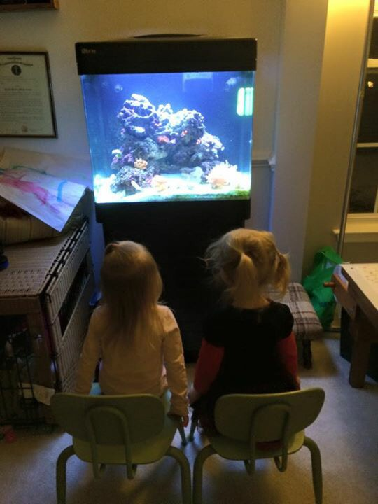 girls at fish tank