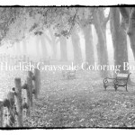 Downloadable Grayscale Coloring Pack Eight Landscape Pages From Beautiful Nature