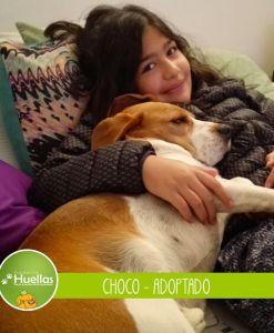 choco_003