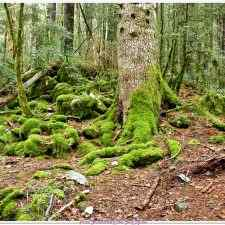 Turieto de http://senderistasestosempina.blogspot.com.es
