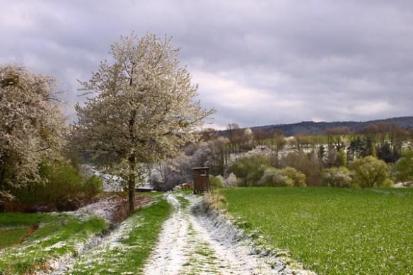 Überall ein wenig Schnee 3399