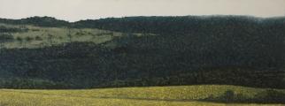 "<h5>Colline</h5><p>Oil on canvas, 29½"" x 78¾"" (75 x 200cm)</p>"